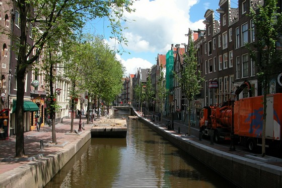 Tree lined canal in Amsterdam