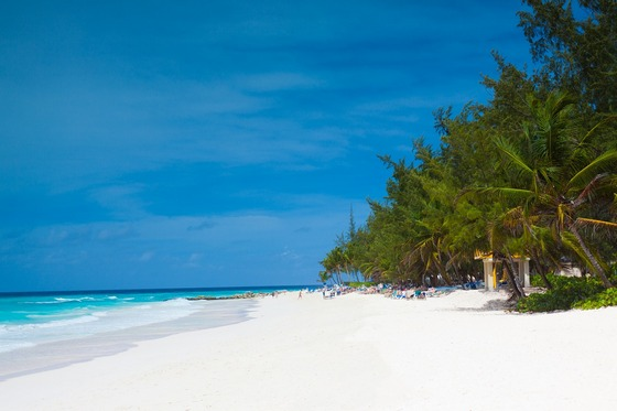 Beautiful white sand beach in Barbados