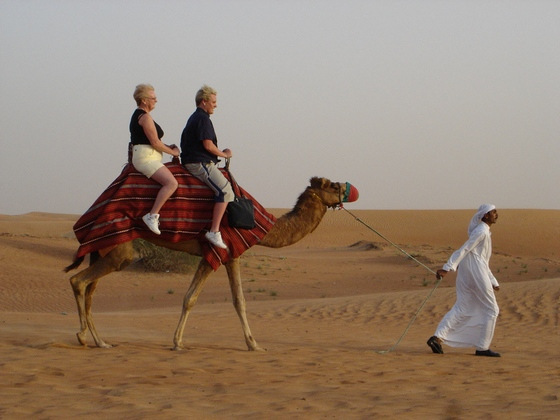 Going on a camel ride in the desert