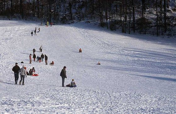 Skiing destination for the family