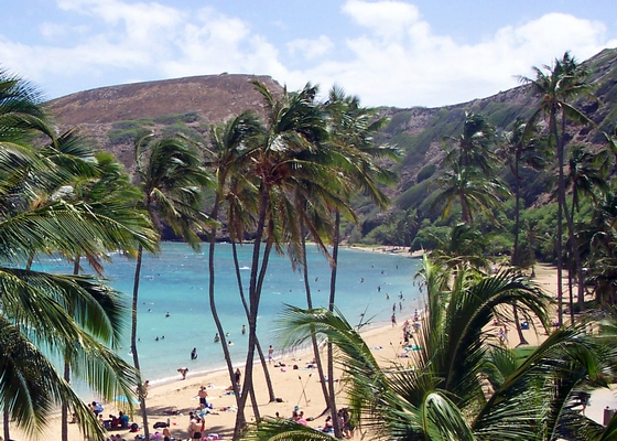 A beach in Hawaii, United States