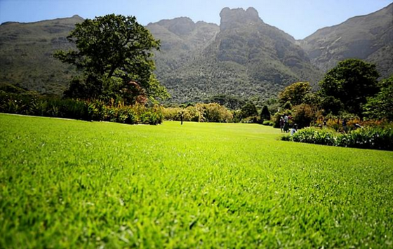 Botanical Gardens in South Africa