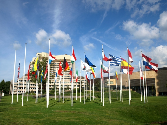 European countries national flags on display in Bruxelles